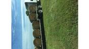 Alfalfa for sale!